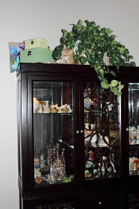 Bad Cat Chris on China Cabinet