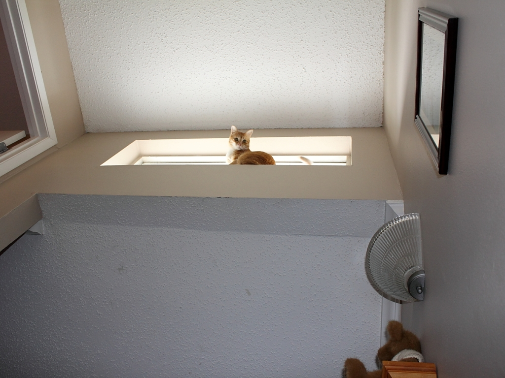 Chris in Window - View from below