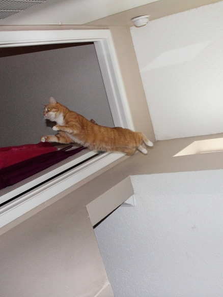 Chris jumping down from Window