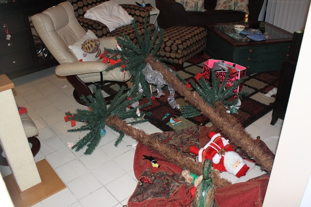 Christmas tree after cats knocked it over.
