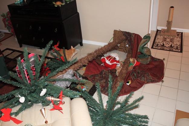 20131230_Fallen tree_187