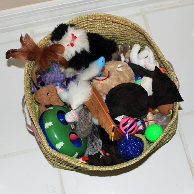 cat tox box (basket)