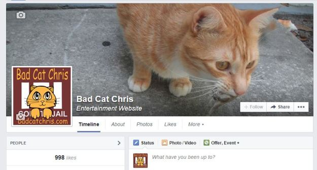 Bad Cat Chris Facebook page