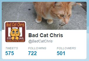 Bad Cat Chris Twitter page