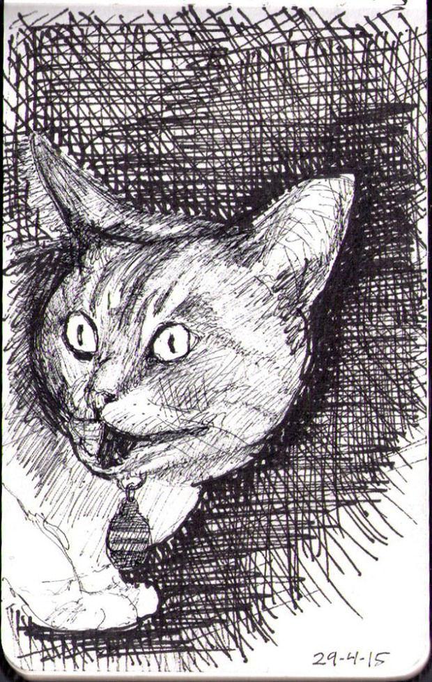 2015_04_29 Frankie - Drawn by Thomas from onedrawingdaily dot com