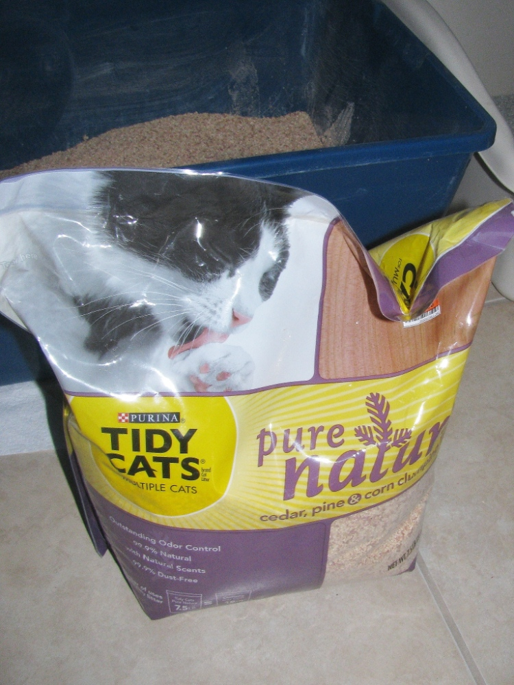 New Cat Litter and the Return of an Old Problem (1/2)