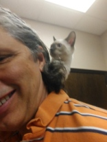 Kitten Floki on my shoulders