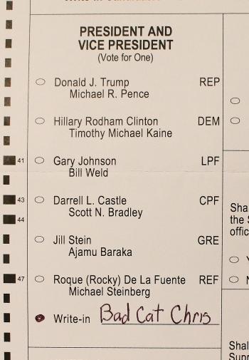 bad cat chris for president ballot