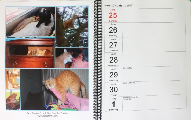 cat blogosphere calendar