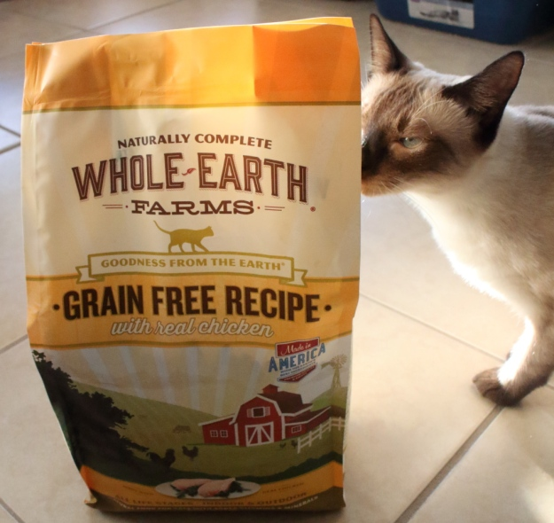20170130_cat-food_0804