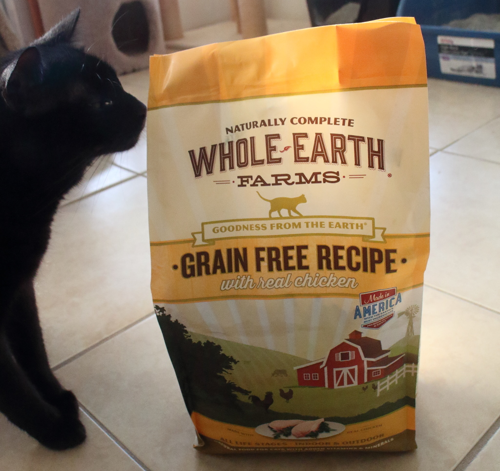 Is Grain Free Dry Food Bad For Cats