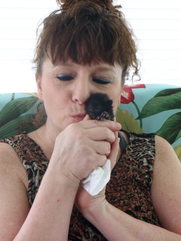 Felice and Kitten