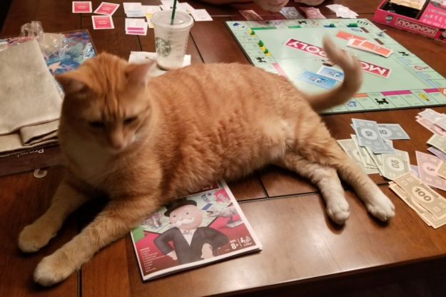 cat Chris on Monopoly game